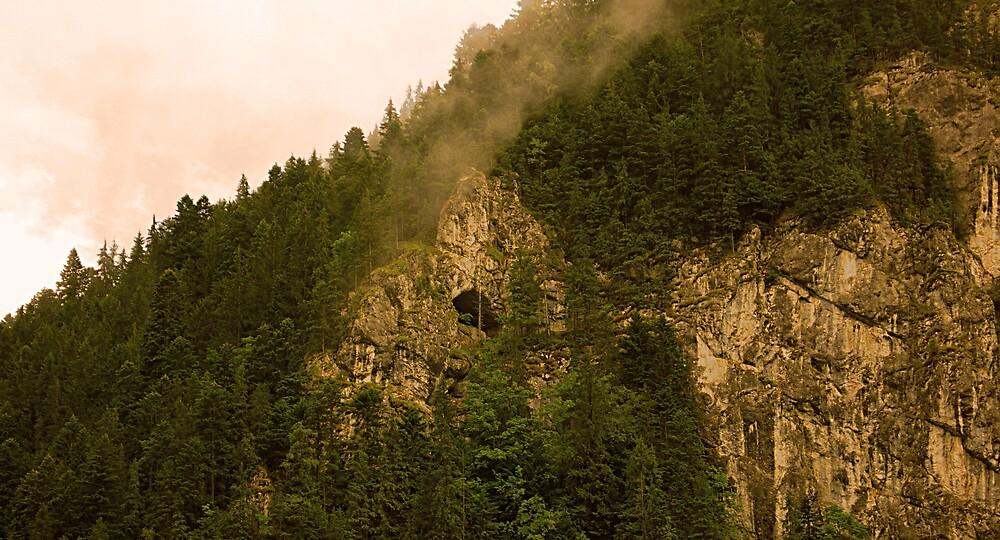 Carpathians Mountains by Adela Hriscu