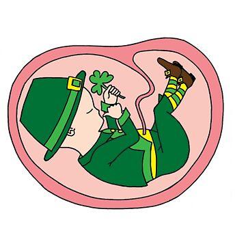 Leprechaun- funny saint patrick day shirt by harrisashlyn801
