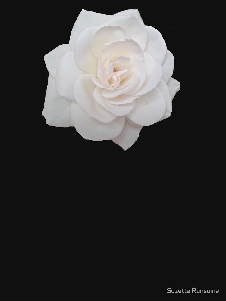 Elegant White Rose by suzetteransome