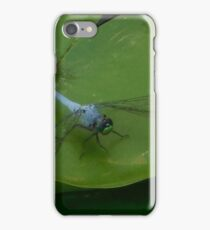 dragon on a lily  iPhone Case/Skin