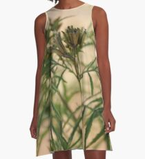 Khaki bush - Tagetes minuta A-Line Dress
