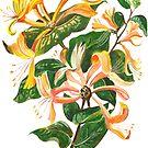 Honeysuckle Bouquet by taiche