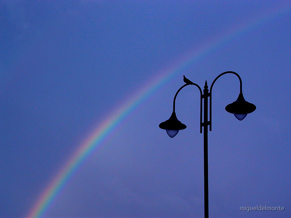 Rainbow  by migueldelmonte