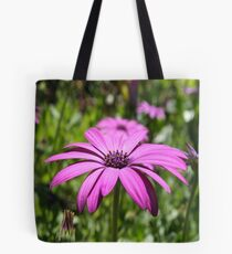 Side View Of A Purple Osteospermum With Garden Background Tote Bag