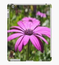 Side View Of A Purple Osteospermum With Garden Background iPad Case/Skin