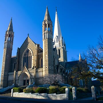 Bendigo Sacred Heart Cathedral by bendyclickr