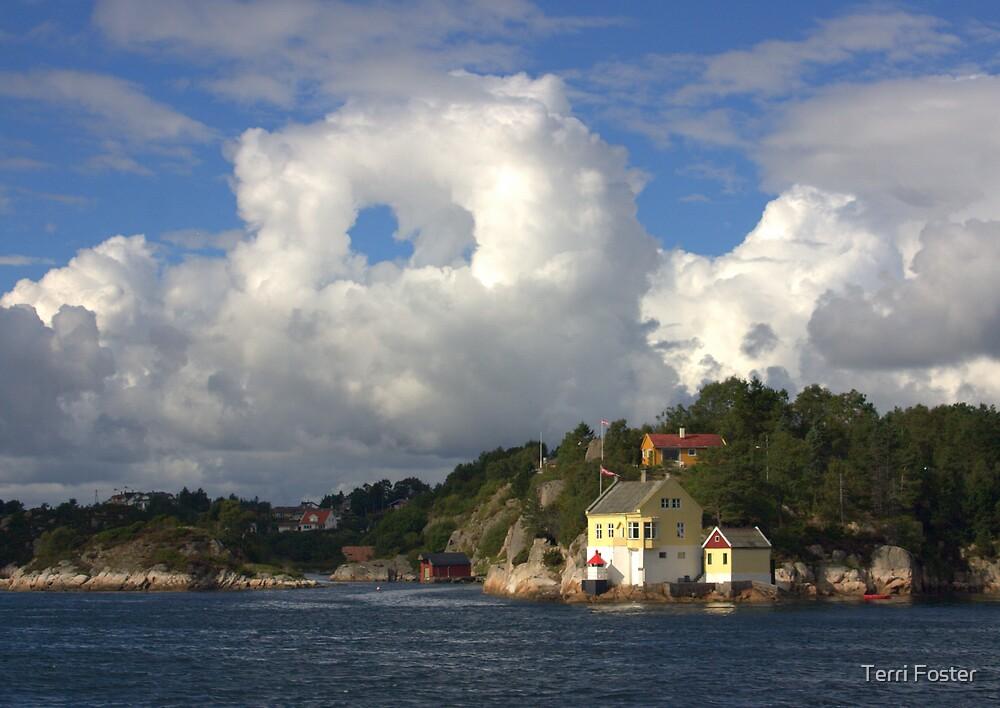 Wild Sky in Norway by Terri Foster