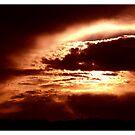 Sunset by Danita Hickson