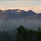 fog by Per E. Gunnarsen