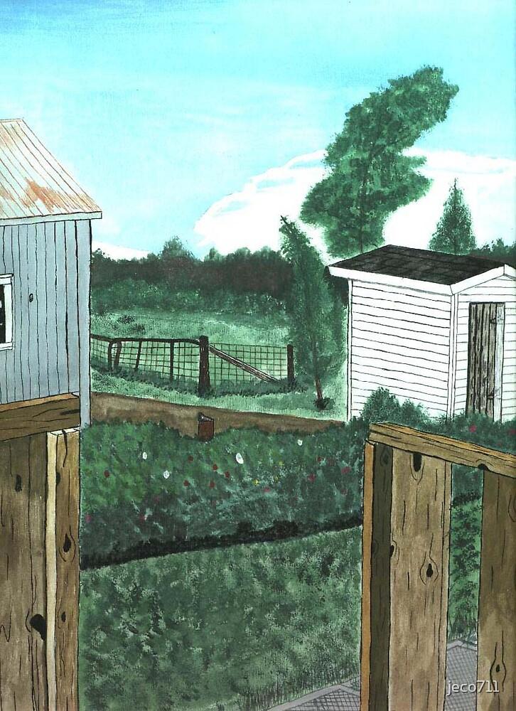 Backyard by jeco711
