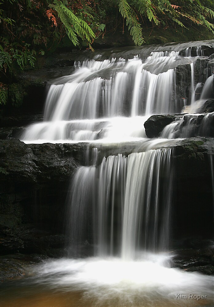Leura Cascades - Serenity, Blue Mountains, NSW by Kim Roper
