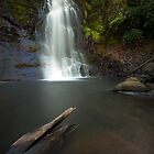 Nihotupu Falls Waitakere Ranges by earlcooknz