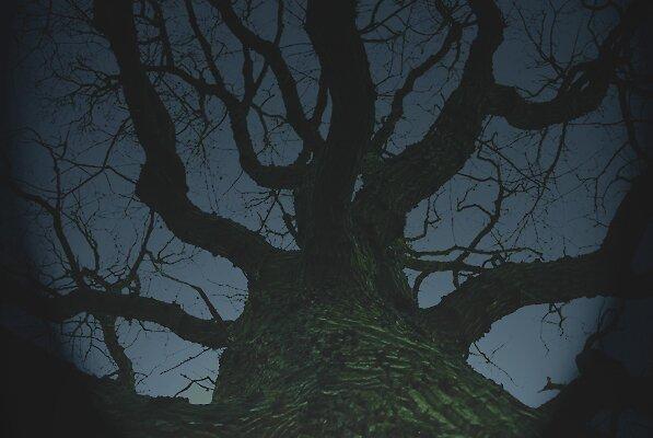 on a dark dark night by moseszap