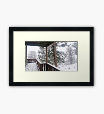 Frosted Trees Framed Print