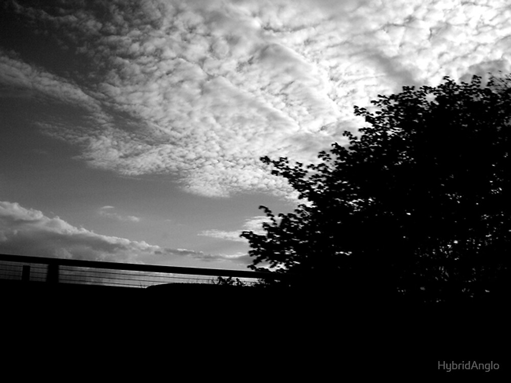 August Clouds in Black and White by HybridAnglo