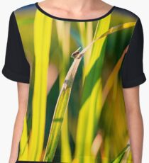 Tiny Fly on Blades of Grass Chiffon Top