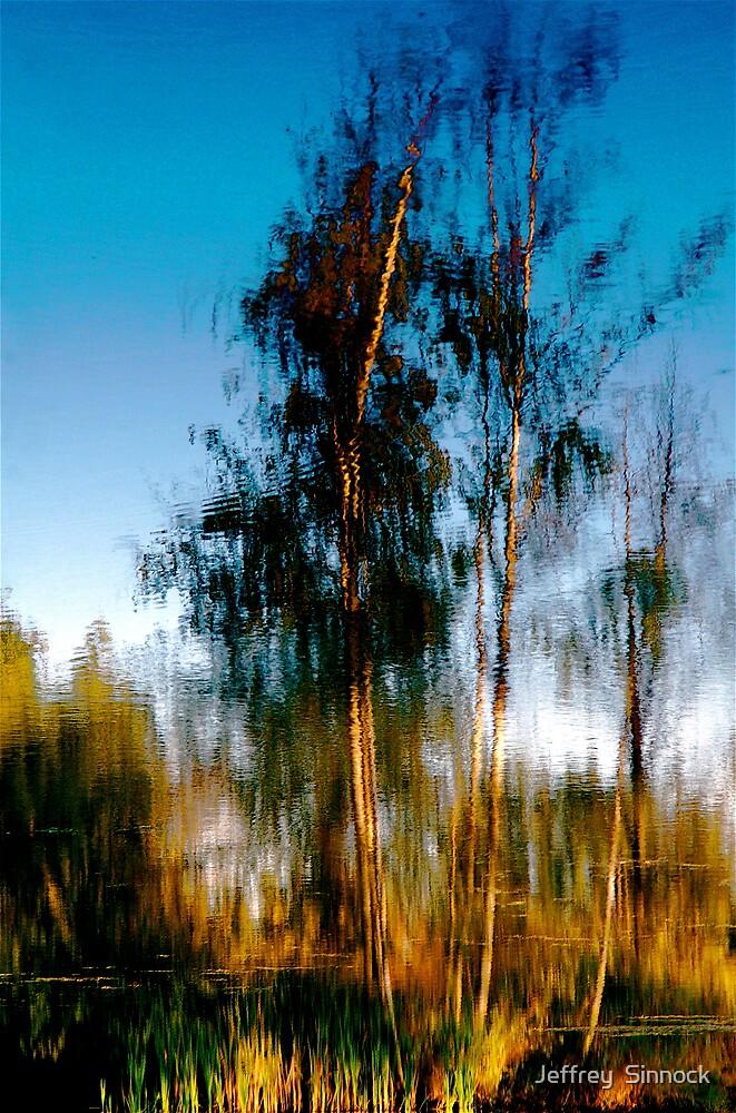 Reflections by Jeffrey  Sinnock