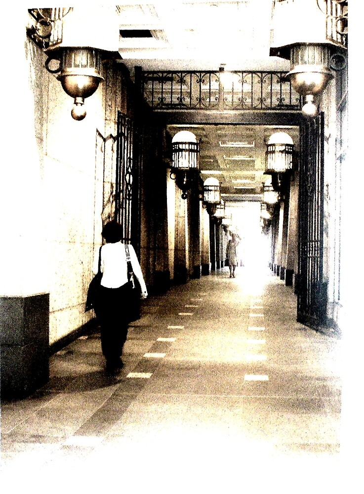 Walkway by N Chester