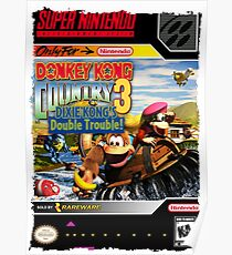 Donkey Kong Country 3 Super Nintendo Collection Poster