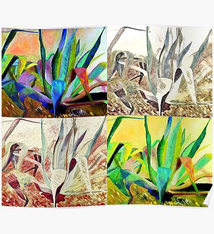 4 agaves  Poster