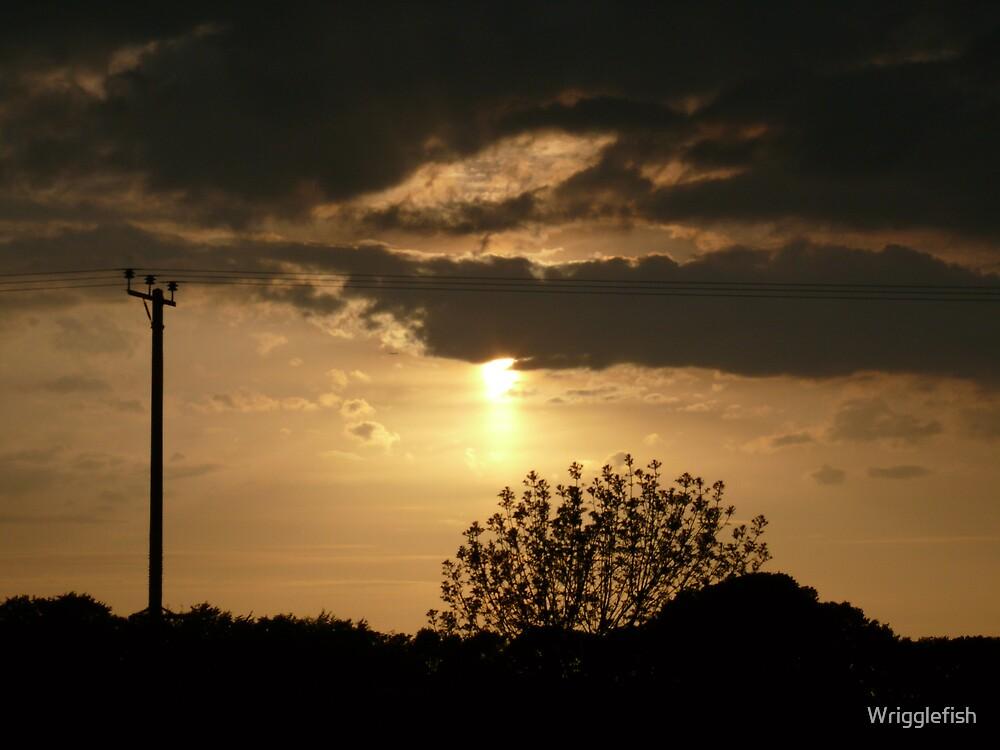 setting sun by Wrigglefish