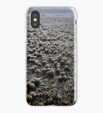 Sand Pellets  iPhone Case/Skin