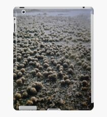 Sand Pellets  iPad Case/Skin