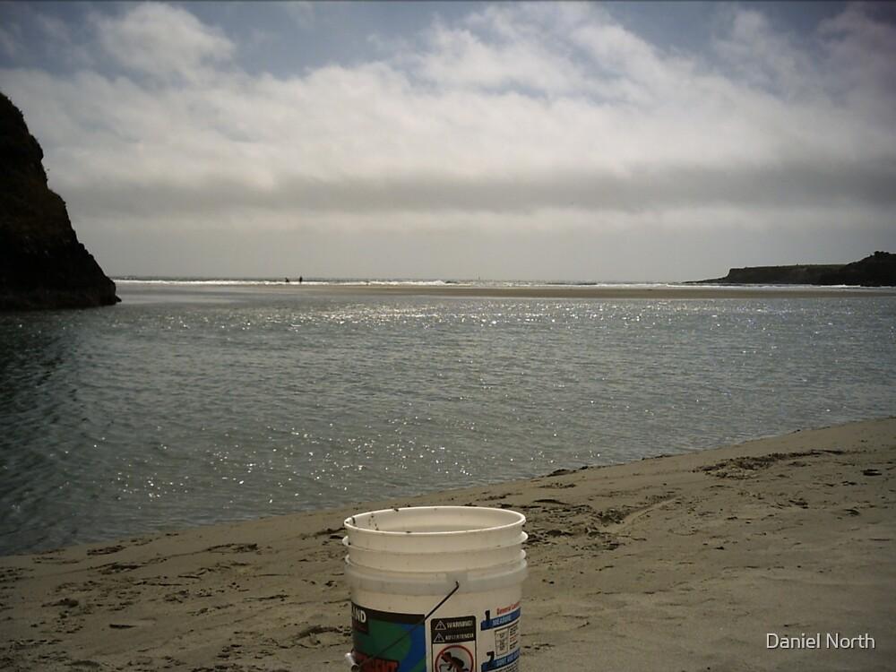 Beach Play by Daniel North
