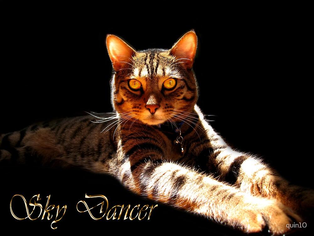 Sky Dancer by quin10