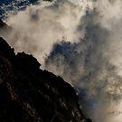 The Mists of Tribulation by Laddie Halupa