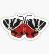 Jersey Tiger Moth - Knitted Sticker