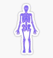XRAY Skeleton iPhone / Samsung Galaxy Case Sticker