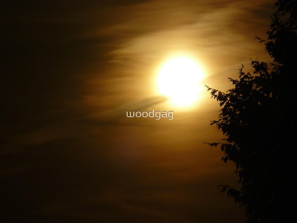 Lunar Beauty  by woodgag