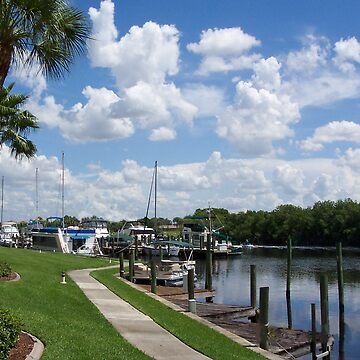 North Shore Marina 01 by Cardet