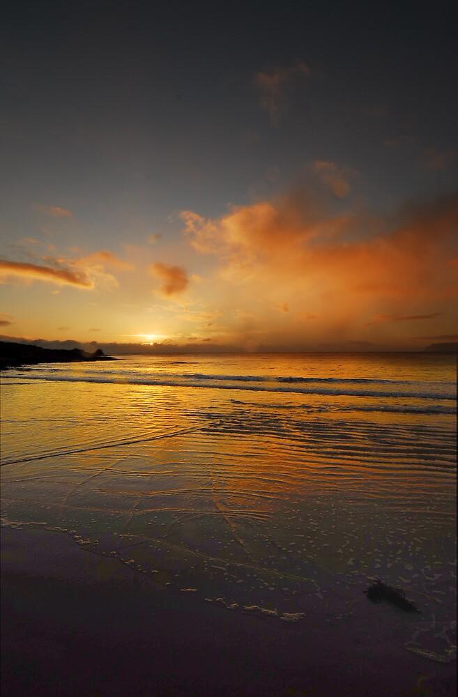 Boat Harbour Sunrise by Sue Wickham