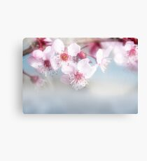 Bright Spring Canvas Print