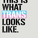This is what Trans looks like by queeradise