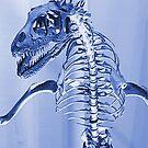 Dinosaur Skeleton by DrDetective .