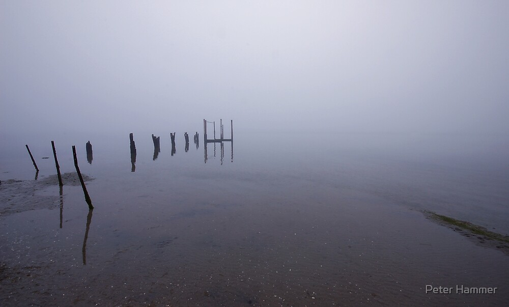 The old jetty by Peter Hammer