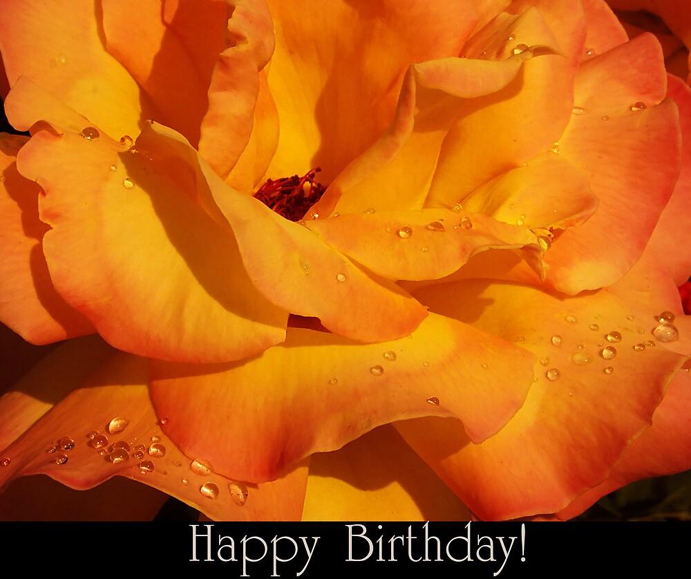 Happy Birthday! by Adela Hriscu