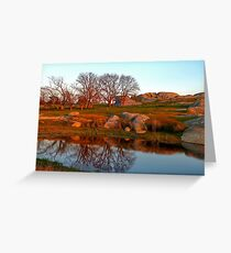 """Mirror Pool !!"" Greeting Card"