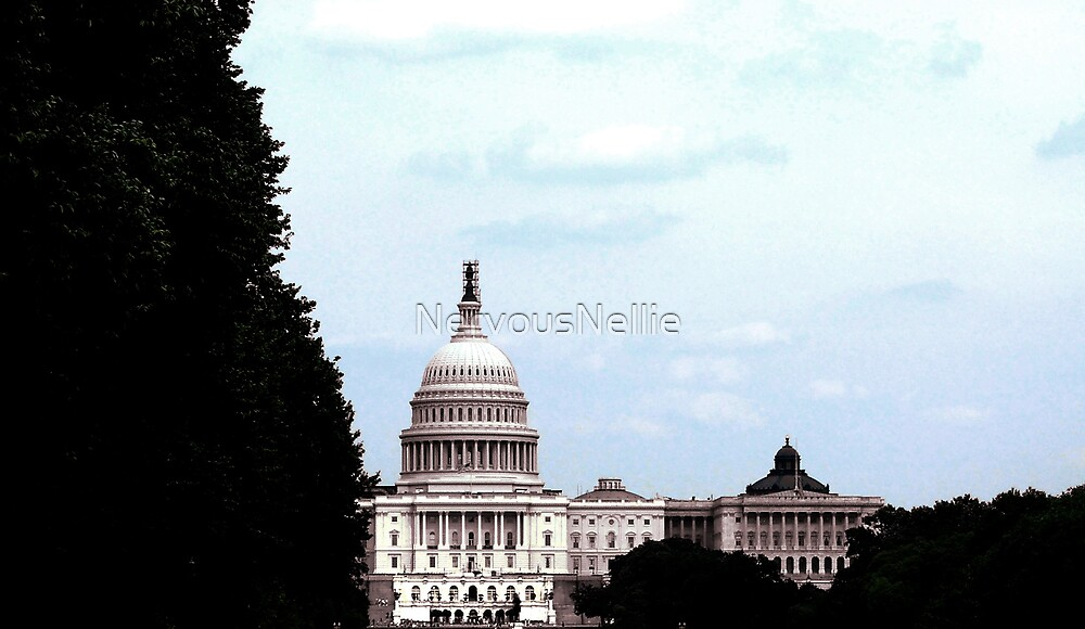 Capitol by NervousNellie