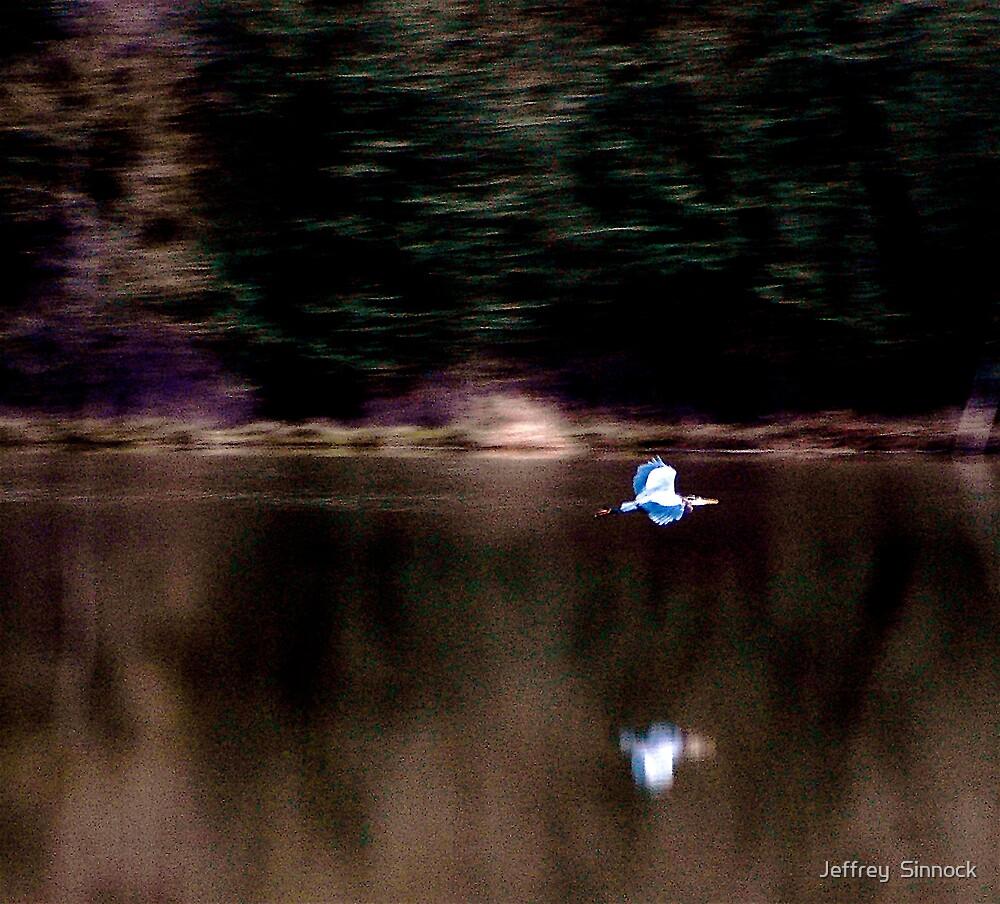 Heron in flight abstract by Jeffrey  Sinnock