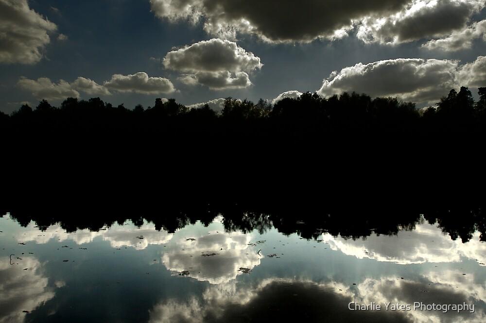Tilgate Lake Reflex by Charlie Yates Photography