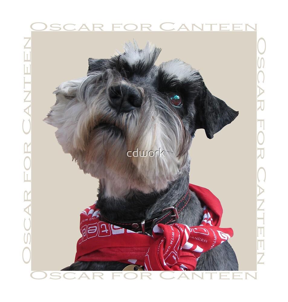 Oscar for Canteen by cdwork