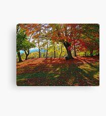 Autumn Shadows(2) Canvas Print