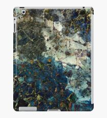 Water Is Life iPad Case/Skin