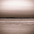 Chobe River by Beth Wold
