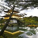 The Golden Temple, Japan by haymelter