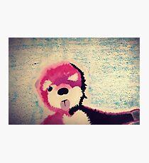 ABQ Pink Bear Photographic Print